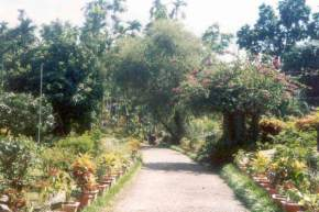 Sippighat Farm, Andaman and Nicobar Islands