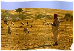 khuri-sand-dunes, jaisalmer