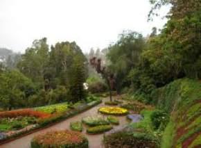 Botanical Garden, Ooty