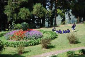 attractions-Lloyds-Botanical-Garden-Darjeeling