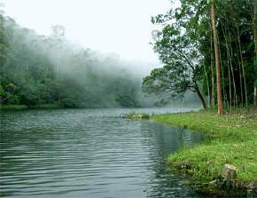 attractions-Devikulam-Munnar