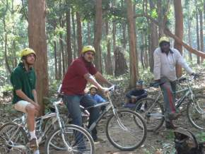 Mountain biking Dandeli, Dandeli