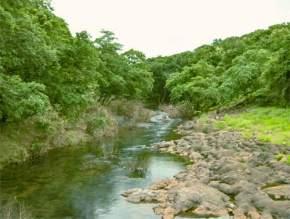 sanjay-gandhi-national-park, mumbai