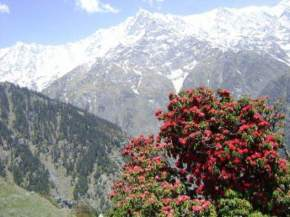 triund-dharamsala, dharamsala