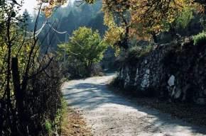 manali-sanctuary, manali