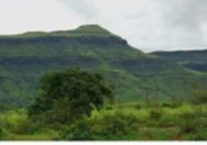 purna-sanctuary, saputara