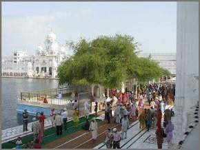 attractions-Dukh-Bhanjani-Ber-Tree-Amritsar