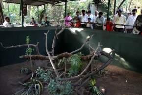 katraj-snake-park, pune