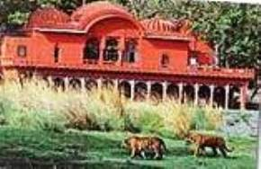 attractions-Jogi-Mahal-Ranthambore