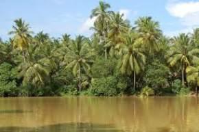 karamana-river, kovalam