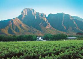 Western Cape Wine Routes, South Africa