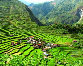 banaue-rice-terraces, philippines
