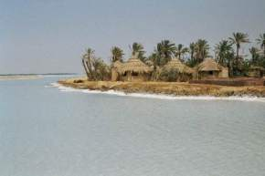 attractions-Siwa-Oasis-Egypt