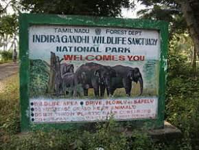 indira-gandhi-national-park, coimbatore