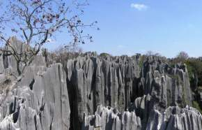 stone-forest-yunnan, china