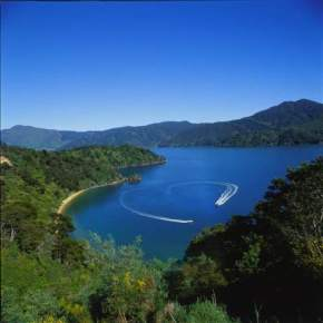 marlborough-sounds, new-zealand