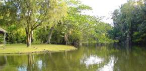 attractions-Pamplemousses-Mauritius