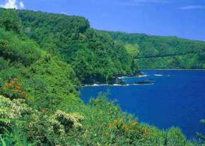 attractions-Hamakua-Coast-Hawaii