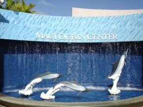 maui-ocean-center, hawaii
