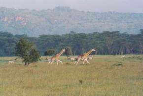 eldoret-kenya