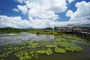 attractions-Wet-Land-Park-Hong-Kong