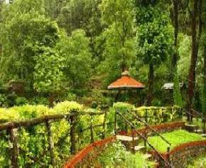 attractions-Chaubatia-Orchards-Ranikhet