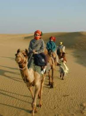 camel-safari, pushkar