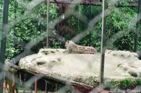himalayan-zoological-park, nathula