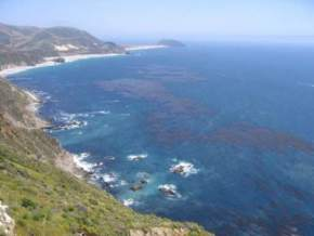 attractions-Big-Sur-USA