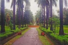 Rock Garden, Kudremukh