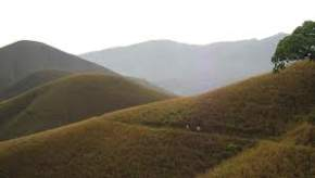 attractions-Gagamoola-Hill-Kudremukh