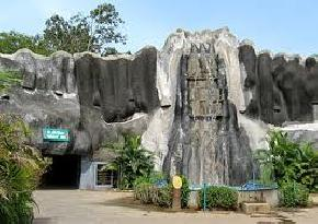 arignar-anna-zoological-park, kanchipuram
