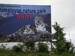 attractions-Himalayan-Nature-Park-Kufri