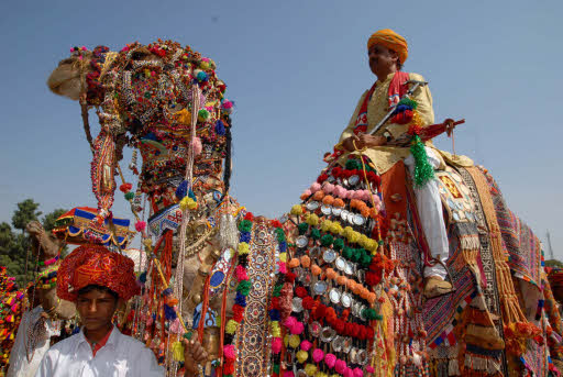 culture of Alwar