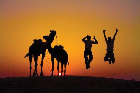 Jaisalmer Thar Desert, jaisalmer sightseeing