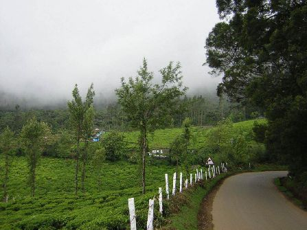 Enchanting Ooty, ooty sightseeing