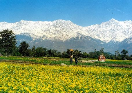 Kangra - Picturesque Valley