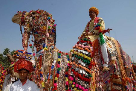 Pushkar Camel Fair, pushkar sightseeing