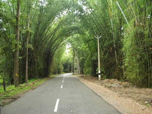 about Wayanad