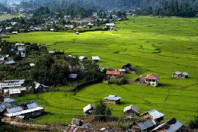 hill-station-in-ziro