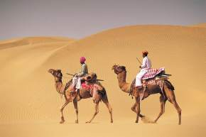 Camel Safari in World