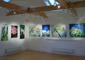 Art Gallery in dalhousie