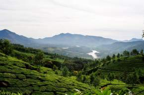 Hill Station in thekkady