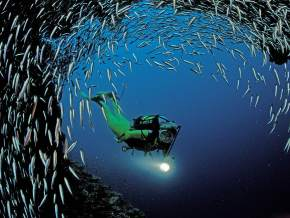 Scuba Diving in World