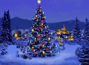 india-festival-Christmas