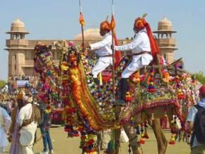 india-festival-Bikaner-Camel-Festival
