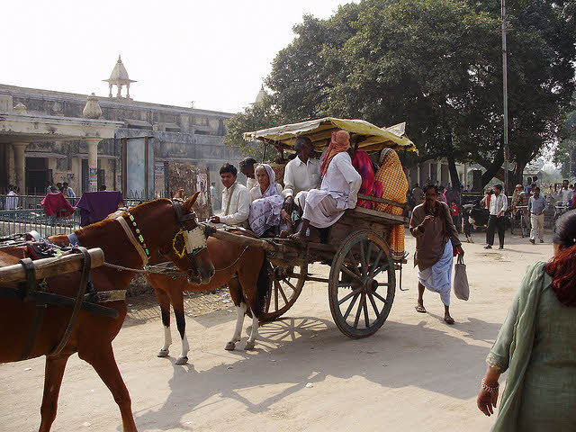 how-to-travel-within-Ayodhya